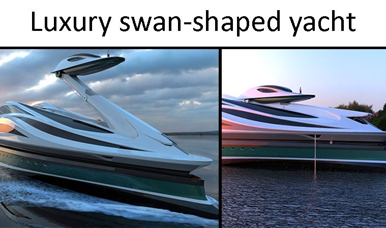 swan shaped yacht