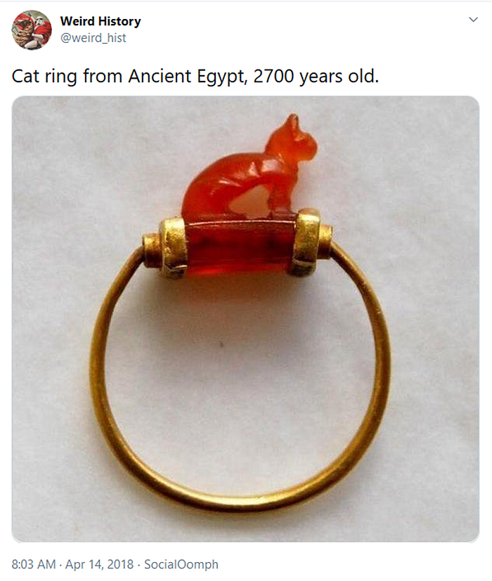 weird history ancient cat ring