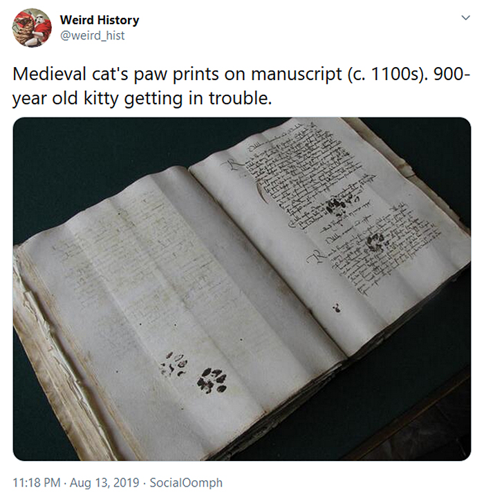 weird history cat paw prints on medieval manuscript