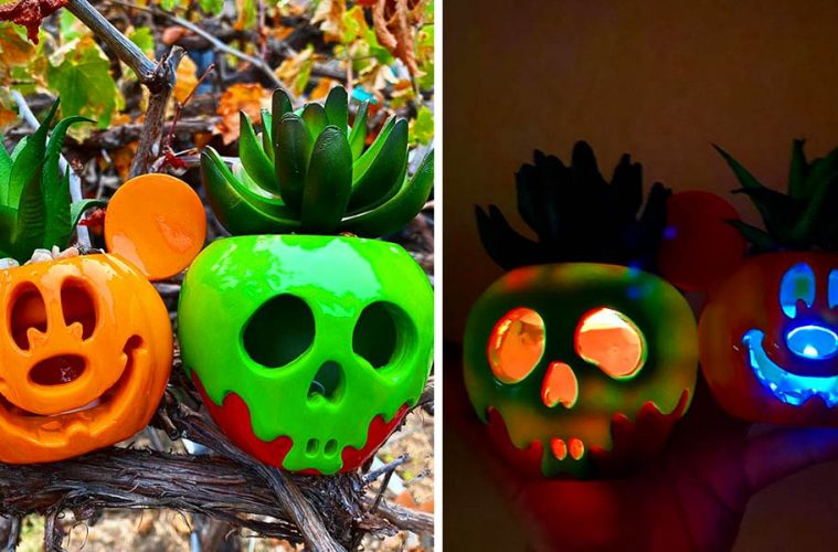 Disney Halloween succulents