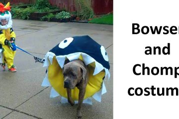 Dog Halloween Costume Ideas