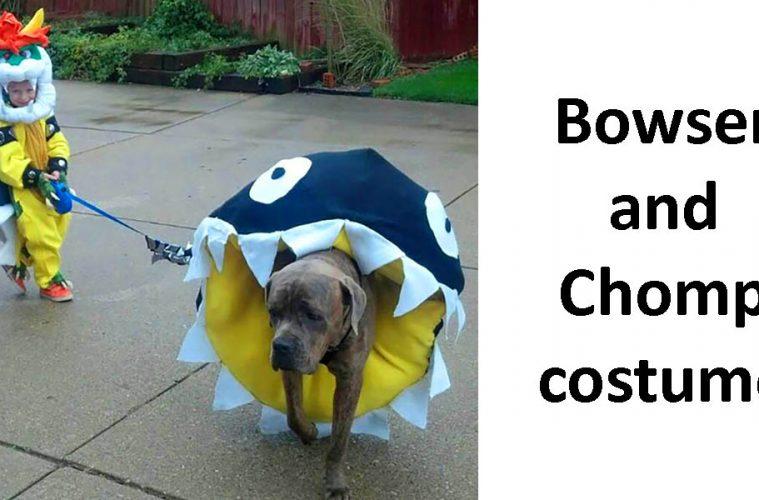 Dog Halloween Costume Ideas