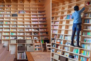 Earthquake-proof bookshelf