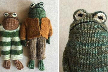 Frog and Toad plushies