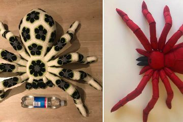 Giant Crochet spider