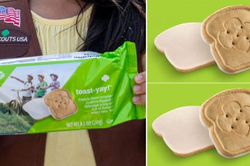 Girl Scouts french toast Cookies