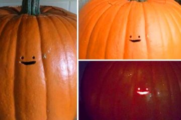 Tiny face pumpkin