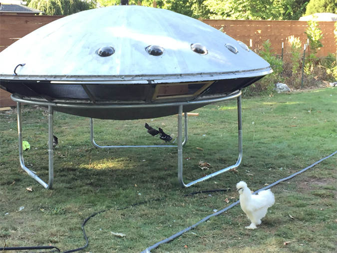 UFO chicken coop mounted on trampoline stand