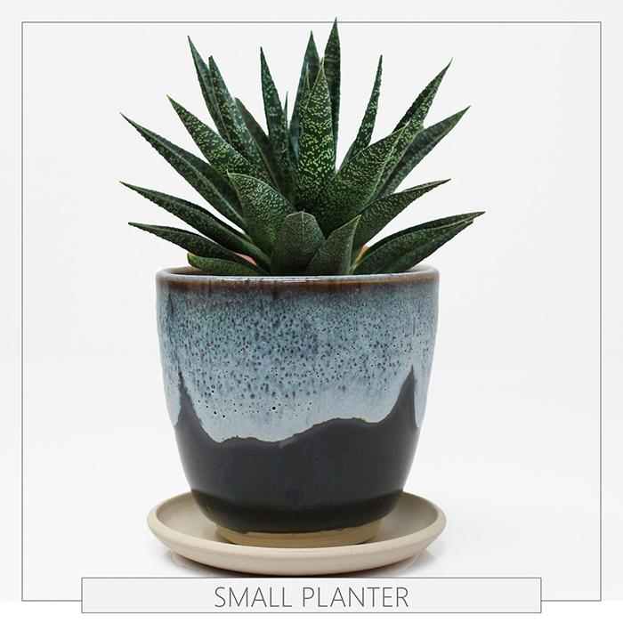 creative gift ideas starry sky stoneware succulent planter by roraimanursery