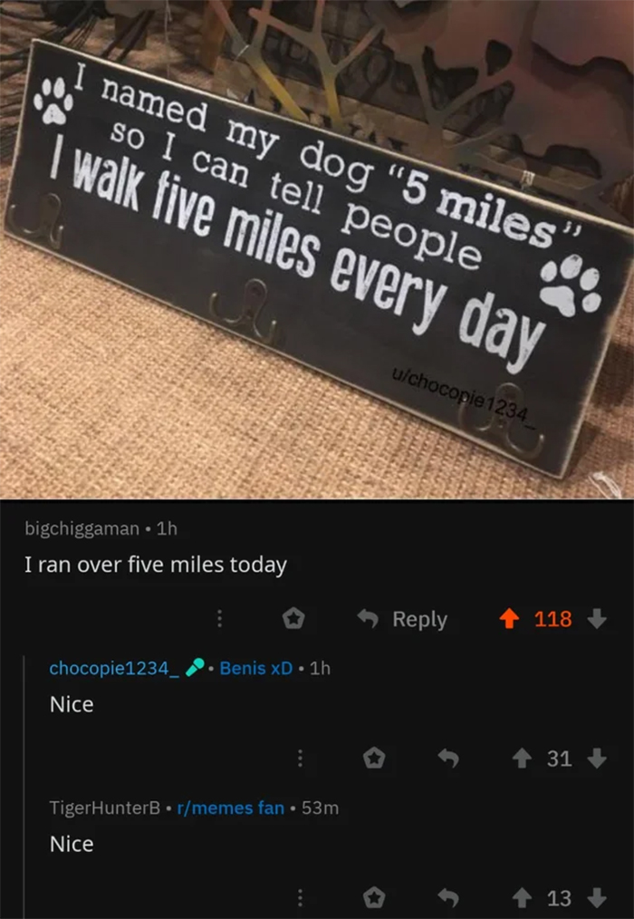 cursed comments five miles dog name