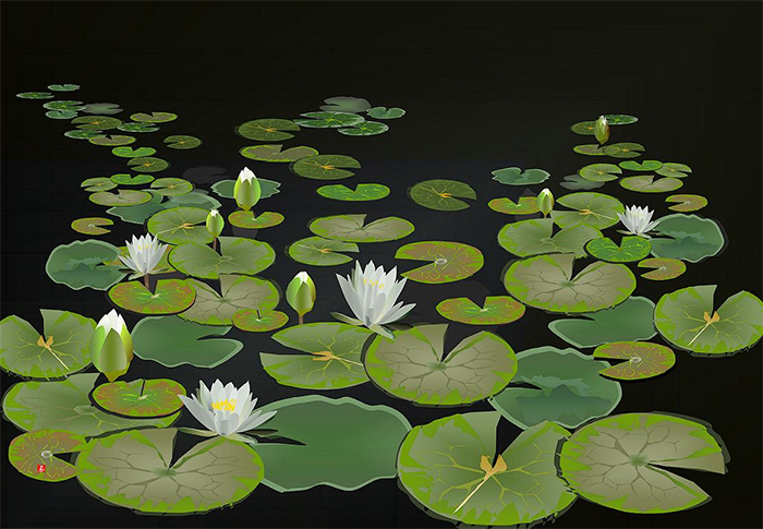 excel spreadsheet paintings water lily