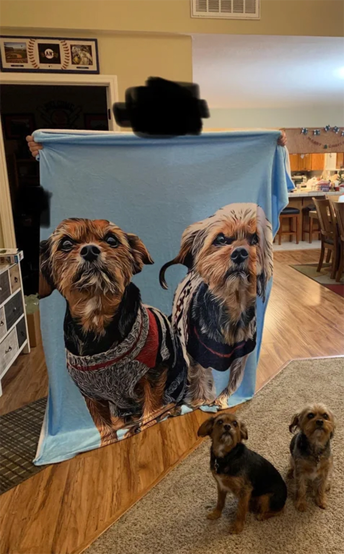 expectation vs reality blanket pet print