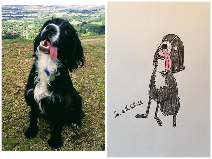 funny pet portraits barney
