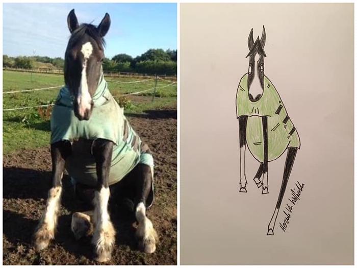 funny pet portraits horse
