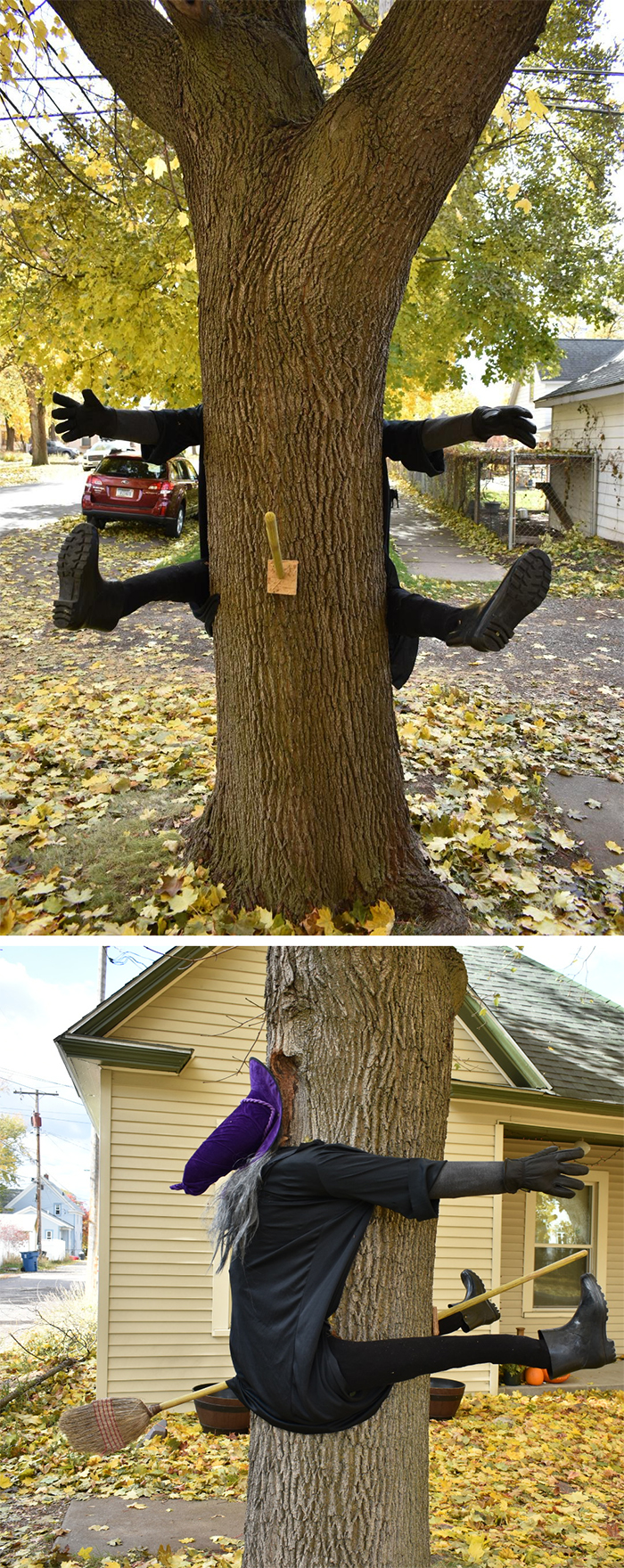 funny spooky outdoor display witch tree