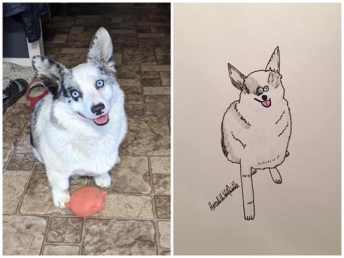 lousy animal drawings delilah