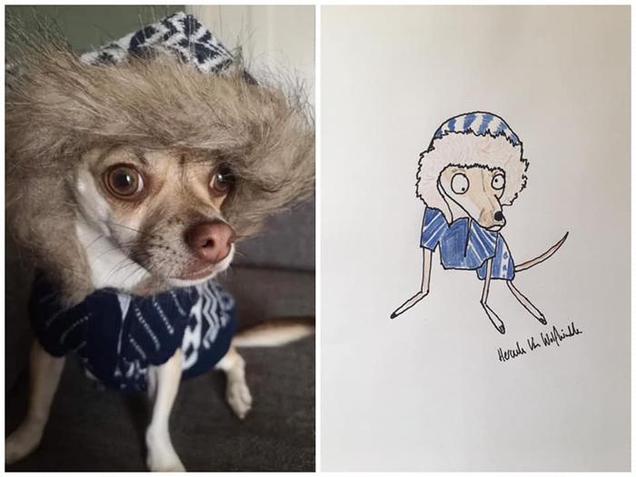 lousy animal drawings dog in winter hoodie