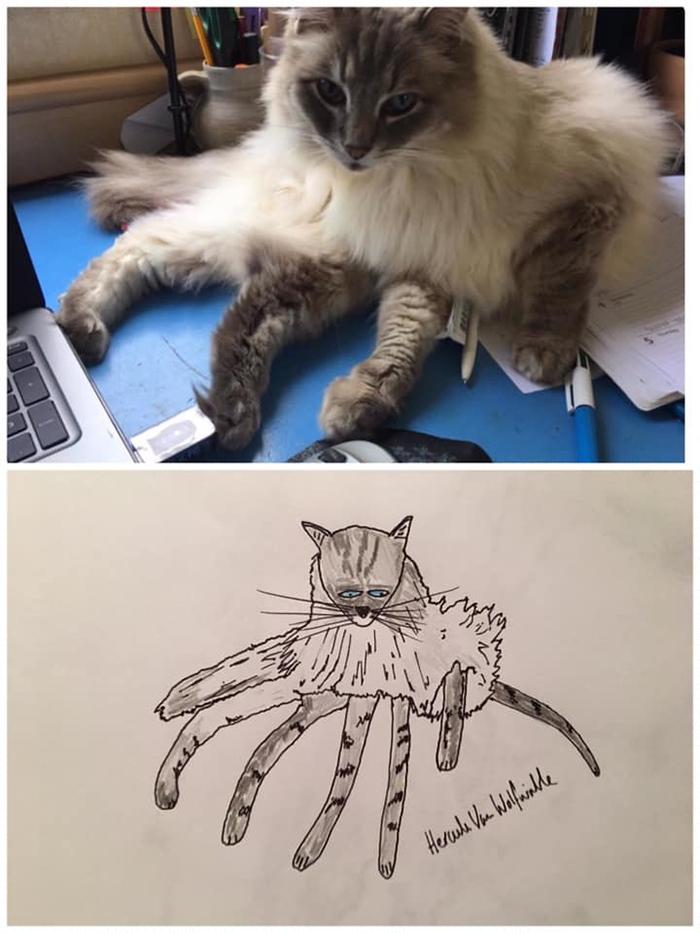 lousy animal drawings dr legg