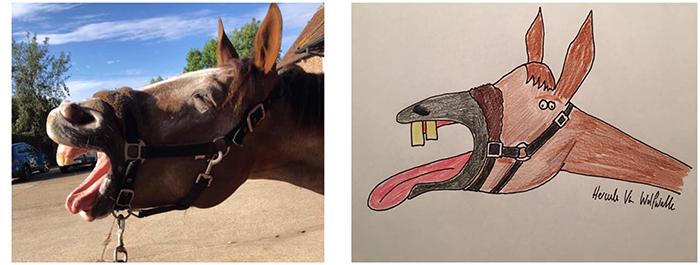 lousy animal drawings horse