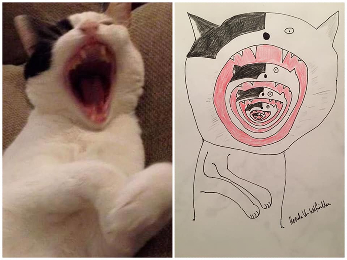 lousy animal drawings inception cat