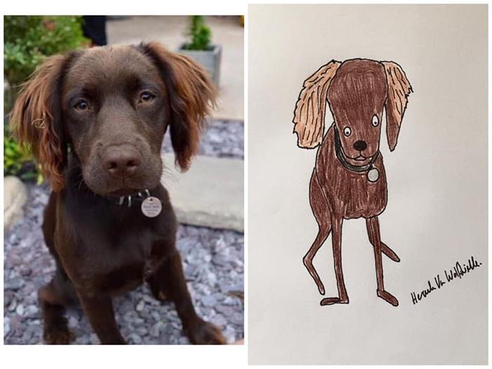 lousy animal drawings poppy