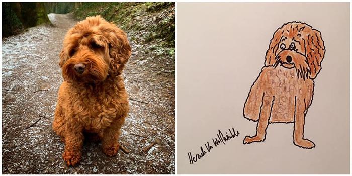lousy animal drawings winnie