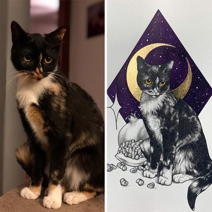 pet portrait better than expected