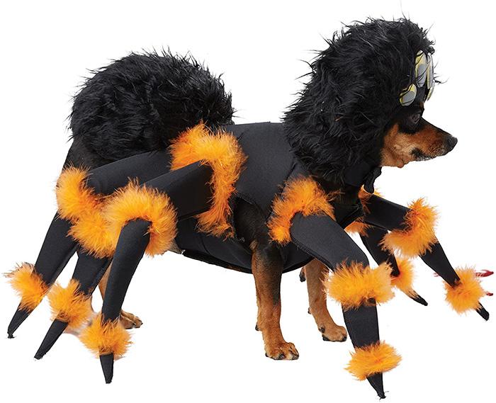 realistic tarantula dog costume