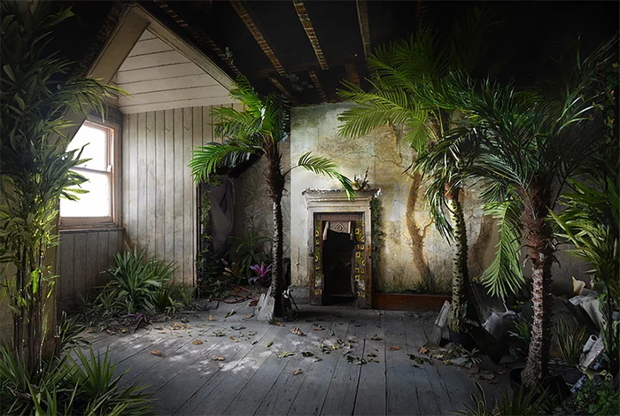 suzanne moxhay photomontages palms