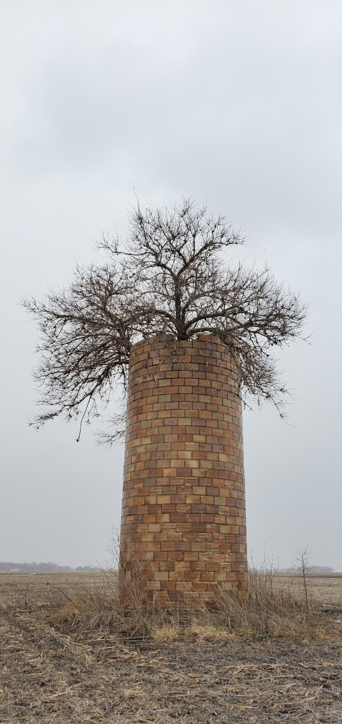 tree-conquers-old-silo-Wlverenefan