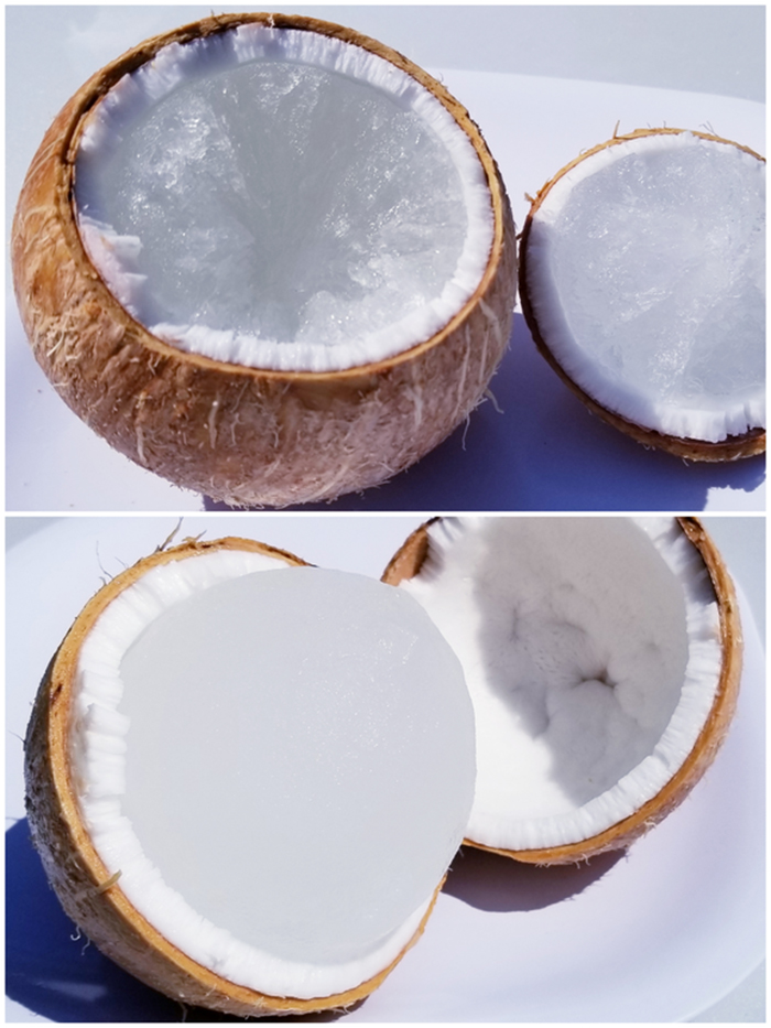 what happens if coconut placed in freezer
