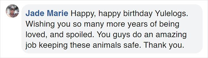 yulelogs birthday comment jade