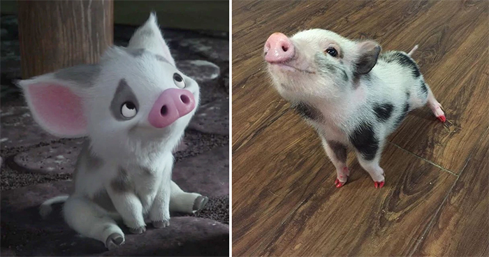 animals recreate disney characters pua