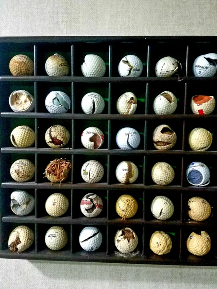father collects ugly golf balls