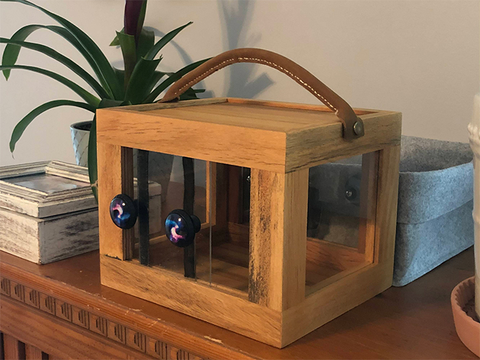 father makes bug box for daughter
