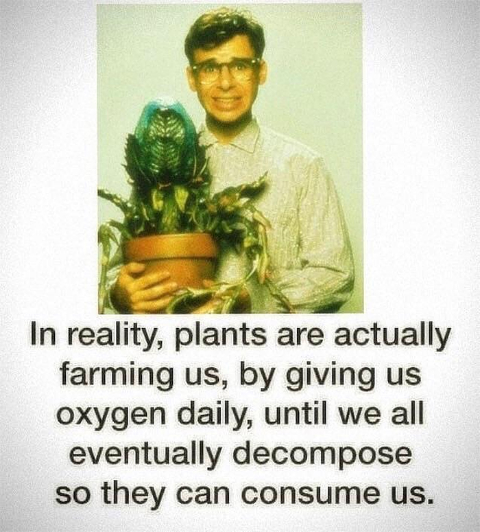 horrifying fact plants consume us