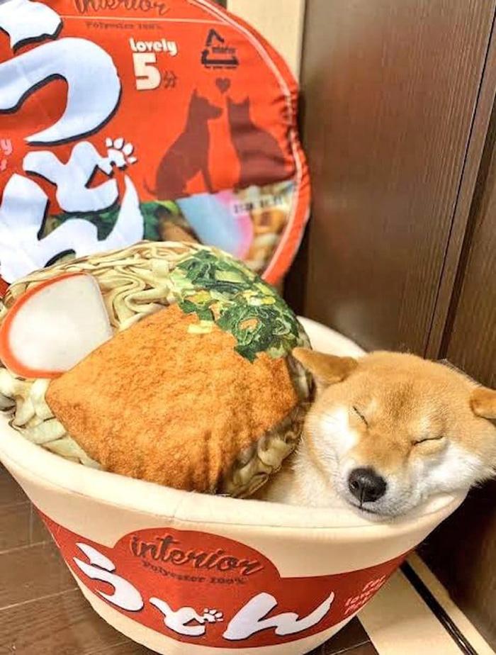 instant ramen bowl snack-inspired pet bed