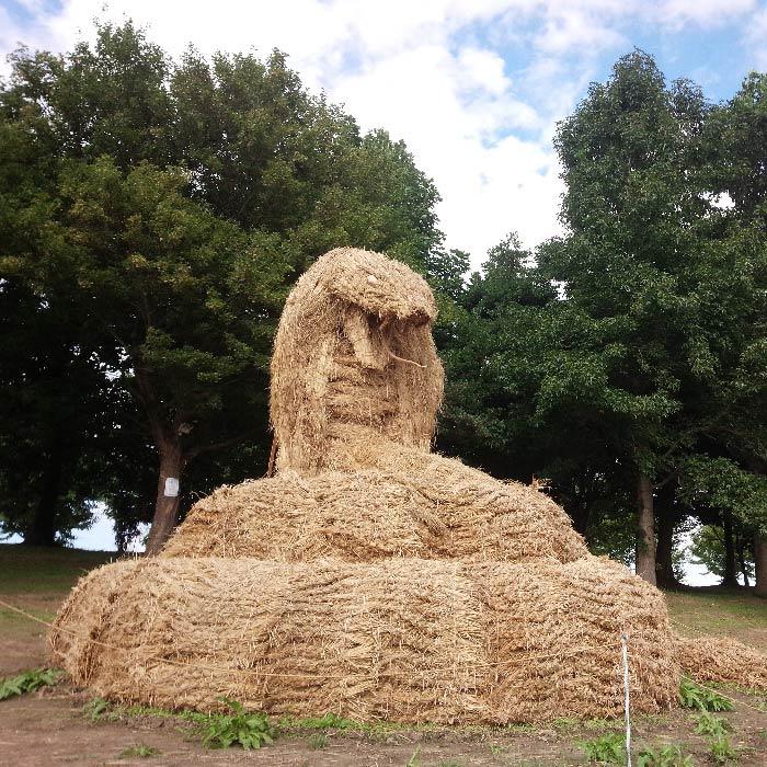 japan wara art festival straw sculptures cobra