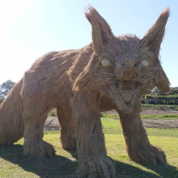 japan wara art festival straw sculptures fox