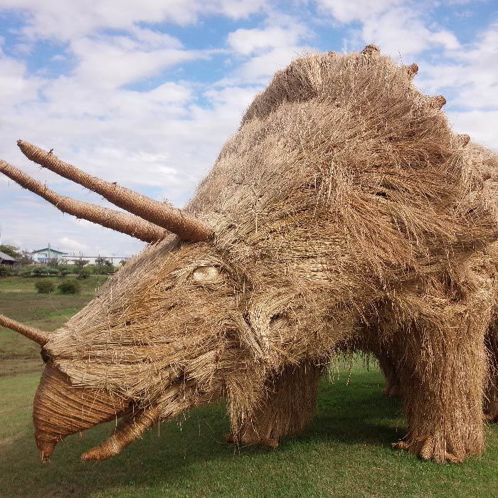 japan wara art festival straw sculptures triceratops