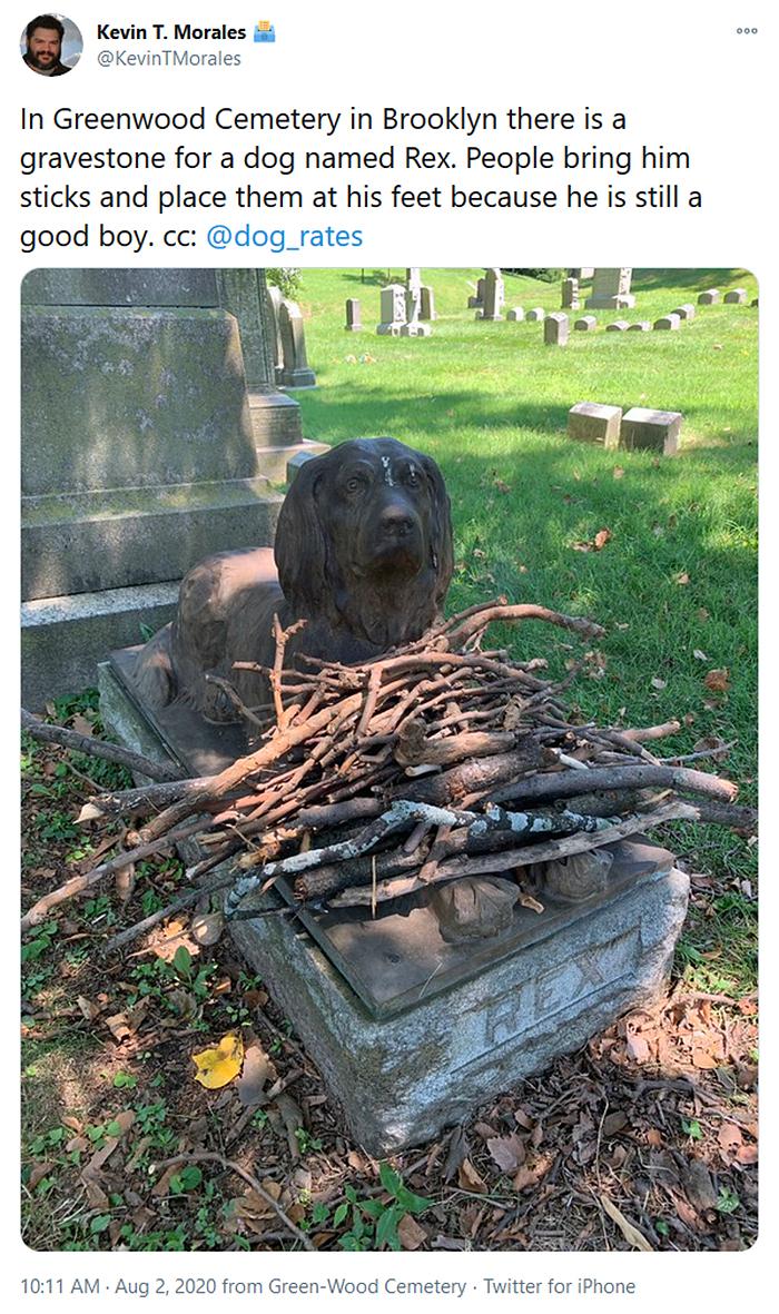 people drop sticks on dog grave