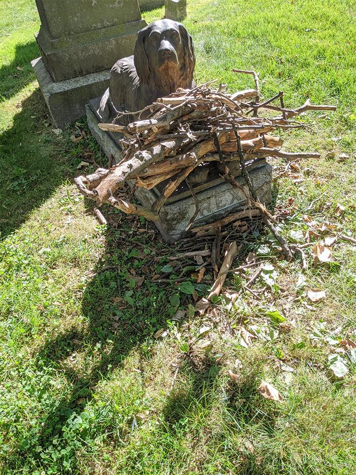 people leave sticks on rex gravestone