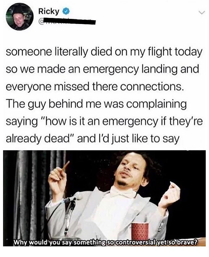 technically the truth dead passenger emergency landing