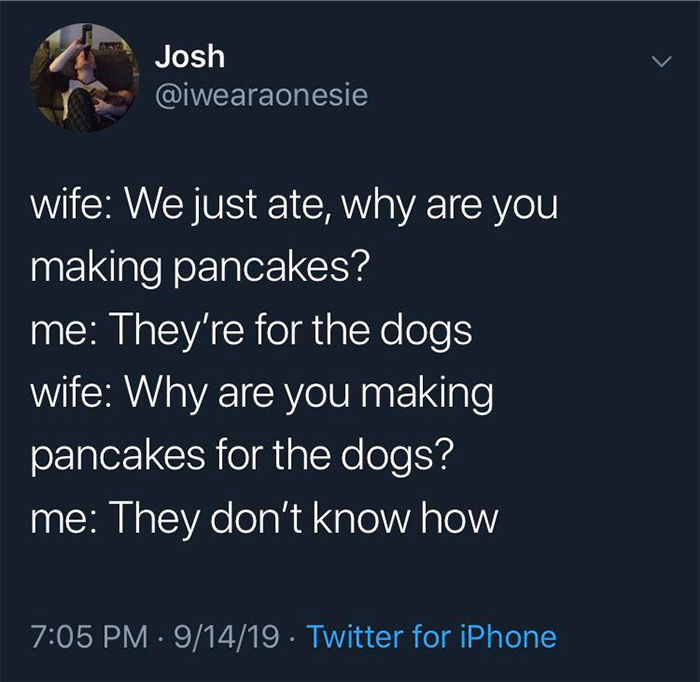 technically the truth dogs cannot make pancakes