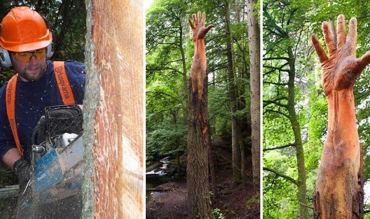 tree hand sculpture