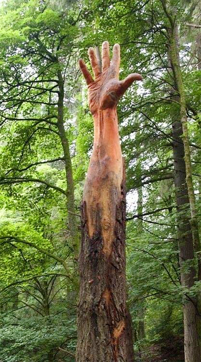 tree hand wood carving