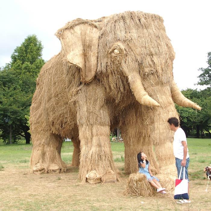 wara art festival straw sculptures elephant