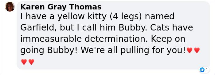 Karen Gray Thomas also calls her cat bubby