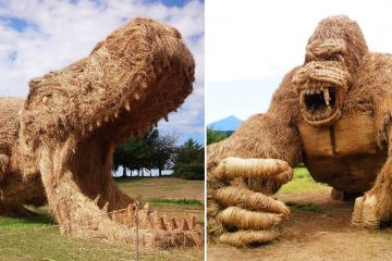 Straw sculptures