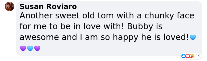 Susan Roviaro says that Bubby the 3-legged cat is a sweet old tom